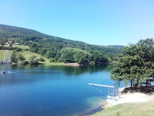 Borsko jezero je veštačko jezero stvoreno za potrebe borskog rudnika, još 1959. godine, zahvata površinu od 30 hektarai na pojedinim mestima je duboko čak i 52 metra i nalazi se na nadmorskoj visini od 438 metara. Tako je nekako počeo i da se razvija turizam.